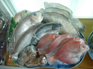 Realistic plastic fish.