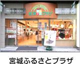 Miyagi Furusato Plaza