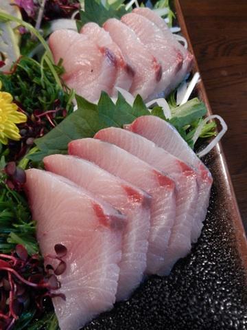 Japanese seasonal seafood | Food Sake Tokyo