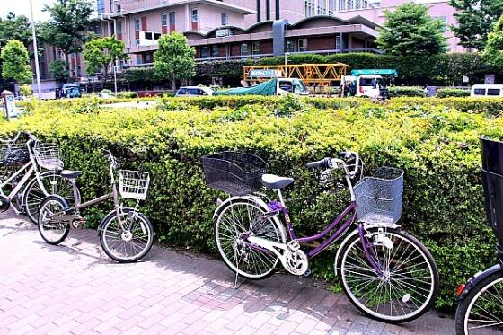 Arrive by bike - Janice Espa