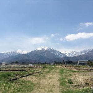 Vin d'Ohmachi