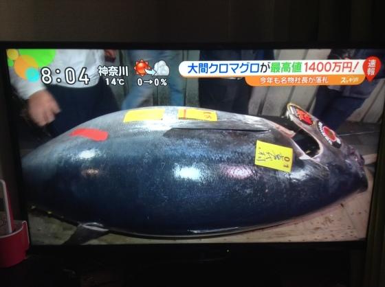 Tsukiji 2016 tuna.JPG