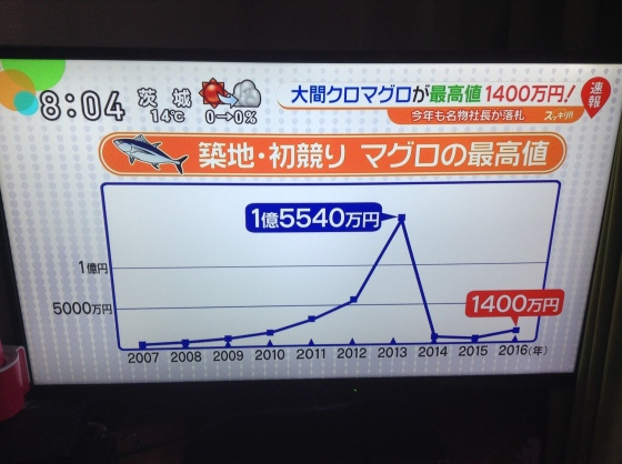 Tsukiji tuna graph
