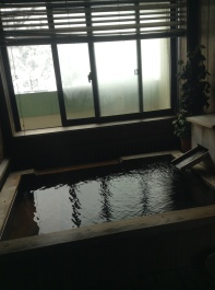 private onsen in the room
